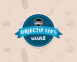 Ulule objectif 120%